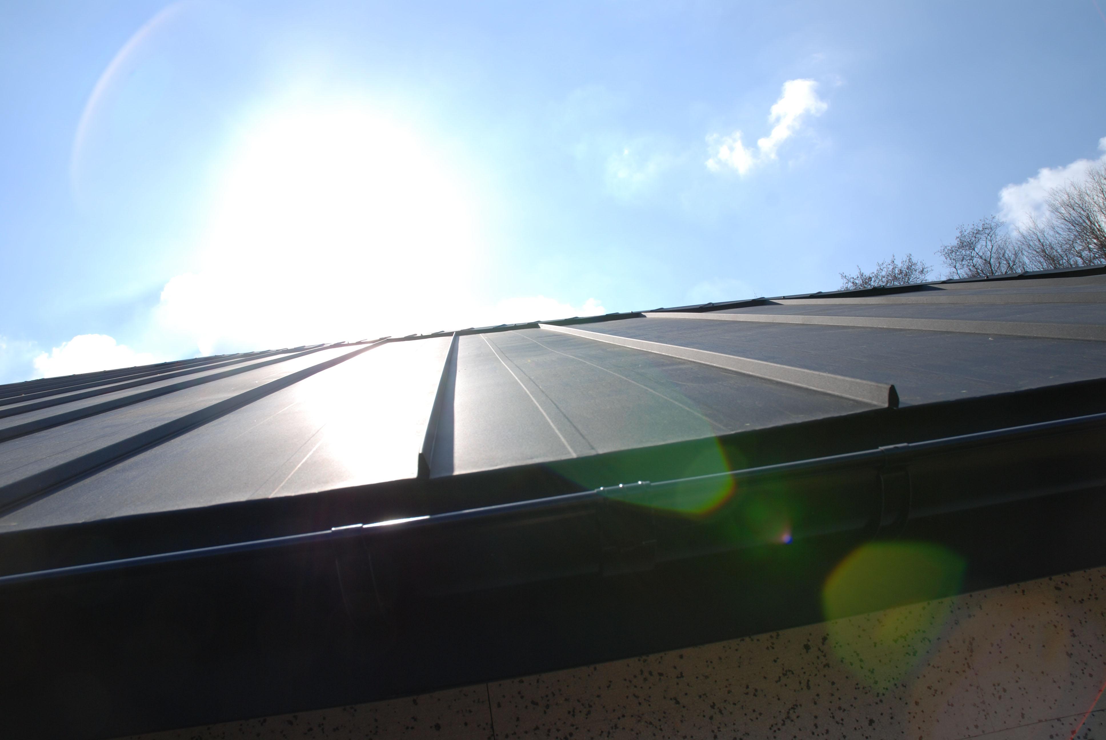 strehe (11)